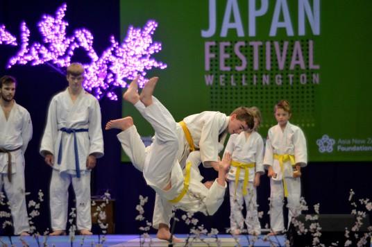 Martial arts - Judo